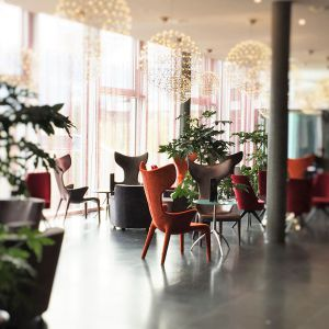 http://www.moderntimes-hotel.com/application/files/thumbnails/thumb_list_2x/3114/5857/1968/time_bar_0000s_0008_Times_Bar.jpg